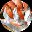 新巻鮭 3,000pt~