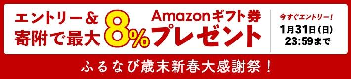 総額100億円ふるなびキャンペーン Amazonギフト券 エントリー&寄附で最大8%プレゼント!