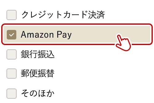 「Amazon Pay」にチェックを入れる