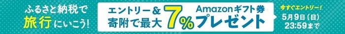 ふるさと納税で旅行にいこう!エントリー&ふるなびトラベルへの寄附で最大7%のAmazonギフト券 コードがもらえる!