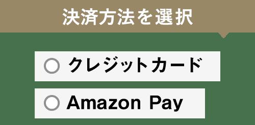 ログイン状態にてクレジットカード決済、またはAmazon Payで寄附申し込みを完了