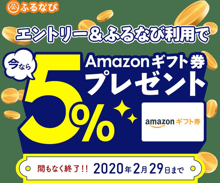 ふるなび エントリー&ふるなび利用で今ならAmazonギフト券5%プレゼント 間もなく終了!!2020年2月29日まで