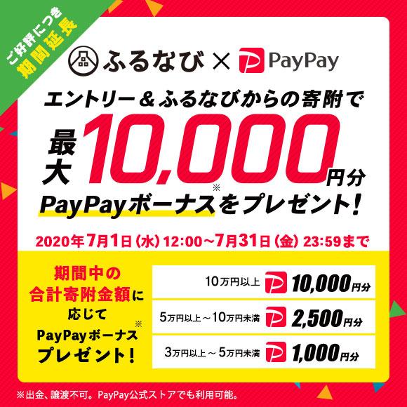 エントリー&ふるなびからの寄附で、期間中の合計寄附金額に応じて最大10,000円相当のPayPayボーナスをプレゼント!