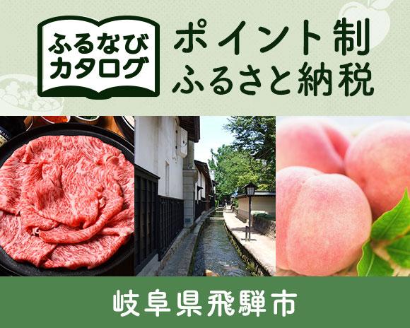 岐阜県飛騨市のカタログポイント