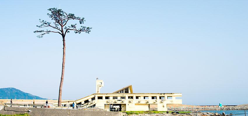 岩手県陸前高田市がテーマに掲げるのは「ノーマライゼーションという言葉のいらないまちづくり」。
