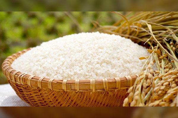 特別栽培米として認められた減農薬でできたお米、「元氣米」をお届けします