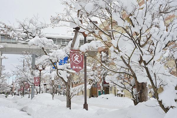 市街地にも大雪が降り、市民の生活に大きな影響を与えました。