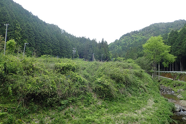 里山整備や耕作放棄地の解消