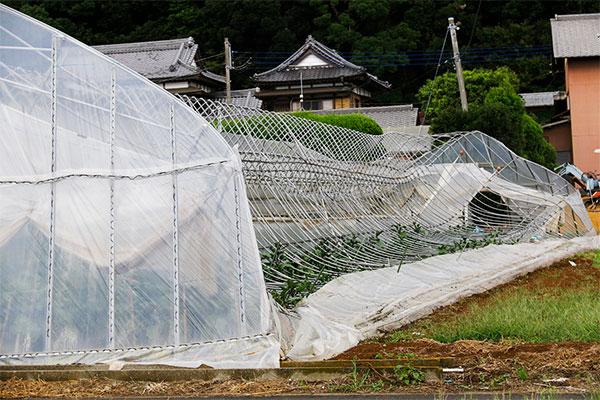 茨城県稲敷市 令和元年台風15号 災害支援