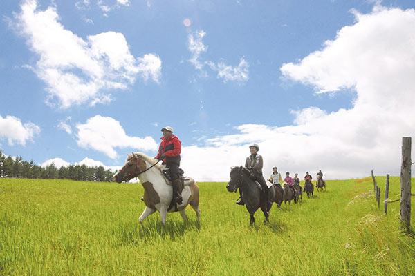 牧草地の緩やかなアップダウンが楽しめる吉田牧場コース