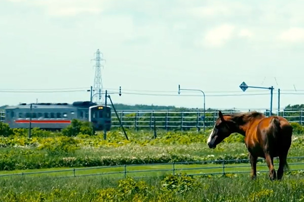 花咲線の風景(牧場から)