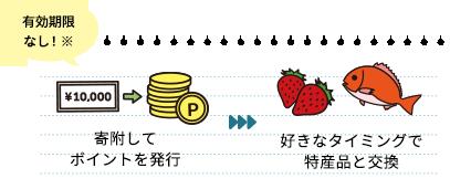 寄附してポイントを発行→好きなタイミングで特産品と交換
