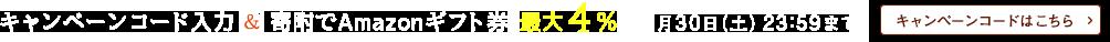 キャンペーンコード入力&寄附で最大4% 11月30日(土)23:59まで
