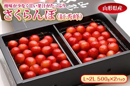 さくらんぼ 紅秀峰 500g×2 F2Y-1308
