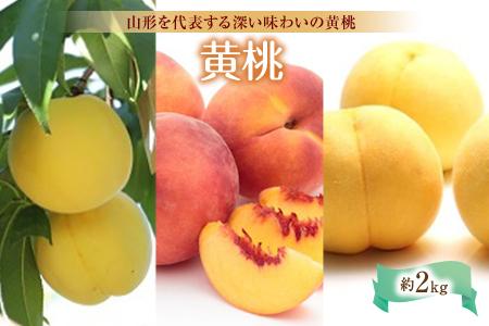 黄桃約2kg F2Y-1439