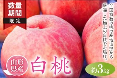 ※数量・期間限定※ <山形県産白桃> 品種・玉数おまかせ F2Y-2039