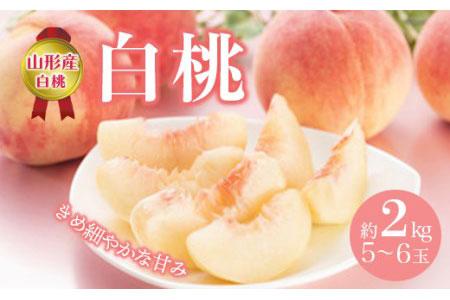 白桃 約2kg(5~6玉) F2Y-2123