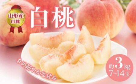 白桃 約3kg(7~14玉) F2Y-2124