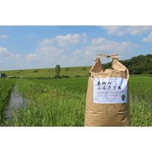 自然の力で育てた東郷のふるさと米(玄米5kg)【1205001】