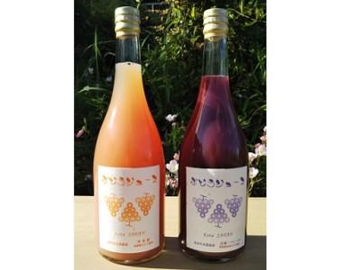 【ふるさと納税】幸田町産ぶどう使用100%ジュース2種詰め合わせ