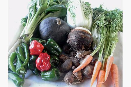 NH‐01 農薬をいっさい使わず栽培した季節の野菜詰め合わせ