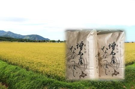 [B30-022]【玄米】増毛町産米ななつぼし10㎏(新米10月~発送)