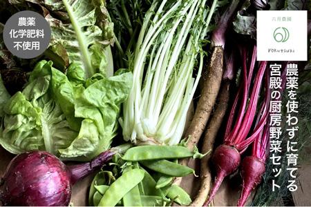 N5宮殿の厨房野菜おまかせセット
