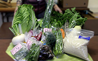 M11 真心便(まごころだより)【季節の野菜詰め合わせセット】(明和町産)