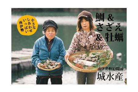 【冷蔵】魚介類セットA 約3kg/鯛 ヒオウギガイ アッパッパ貝 さざえ 牡蠣 かき 海鮮 伊勢志摩