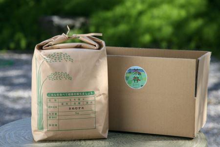 【元年産】近江米 きぬむすめ 白米5kg