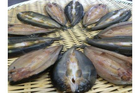 【鮎の繊細な味が凝縮された逸品】滋賀県産 鮎一夜干し