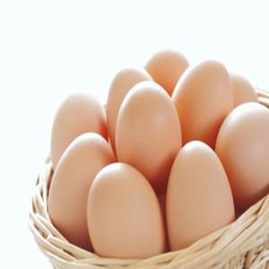 こだわり卵とつけだれのセット【約60個+つけだれ2本】【K043SM】