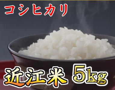 【平成30年度産】近江米 コシヒカリ 白米5kg