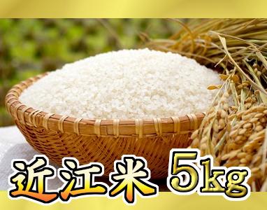 【平成30年産】近江米 きぬむすめ白米5kg