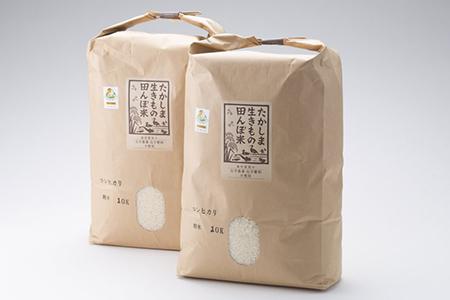 【T-256】 たかしま生きもの田んぼ米 コシヒカリ
