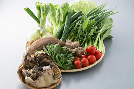 A8 東近江市の野菜セット