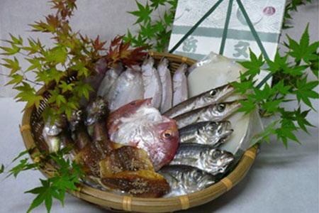 浜文地魚一夜干セット
