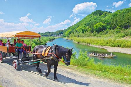 京馬車で行く周遊コース 大人子ども共通チケット6人分 ※(要予約)申込み前に予約が必要です