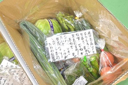 ファーマーズマーケットたわわ朝霧 亀岡産野菜セット