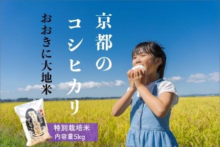 特別栽培米コシヒカリ「おおきに大地米」5kg 《令和3年度産》