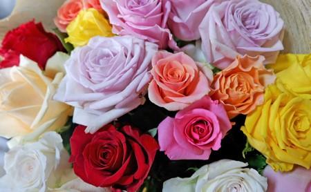 【バラ専門生産者直送】バラの花束(色とりどり18~20本)