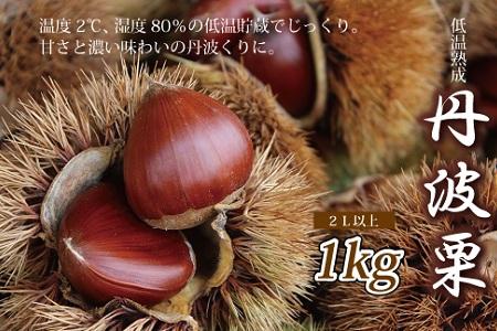 京都丹波 京丹波町産の栗 低温貯蔵・丹波栗 1kg[012NN001L]