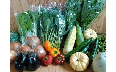A-29.泉州野菜ベジ☆ナイトの季節のお野菜詰合せセット