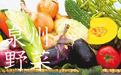 B012 季節の泉州野菜セット(大)