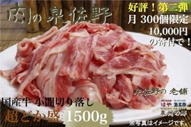 B059 はや泉州の郷 国産牛小間切落とし超ドカ盛1.5kg