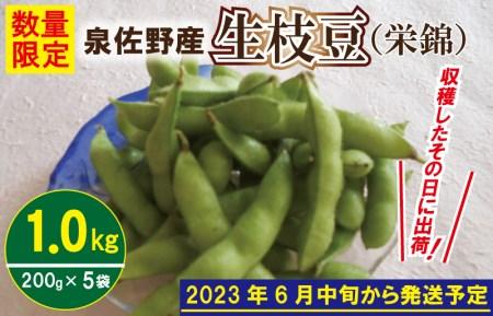 005A063 泉佐野産 新鮮えだまめ1kg