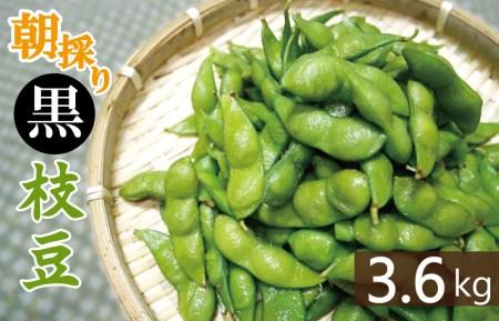 010B141 畑から直送・朝採り黒枝豆3.6kg
