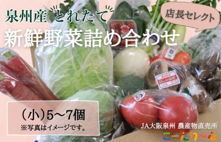 005A178 直売所店長セレクト季節の野菜セット(小)