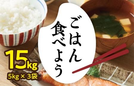 010B614 【期間限定】タワラ印一粒のかほり 盛り盛り 計15kg(5kg×3袋)お米 緊急支援品 10kg以上 訳あり 増量 予約受付