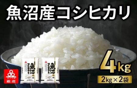 005A301 【新米予約】タワラ印極上の魚沼コシヒカリ お試し4kg(2kg×2袋)